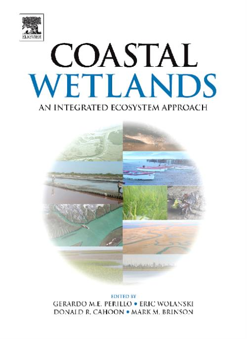 Coastal Wetlands - Product Image