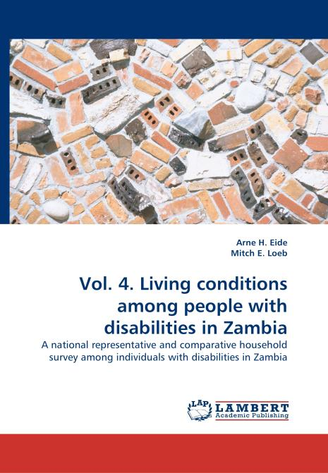Vol. 4. Living conditions among people with disabilities in Zambia. Edition No. 1 - Product Image