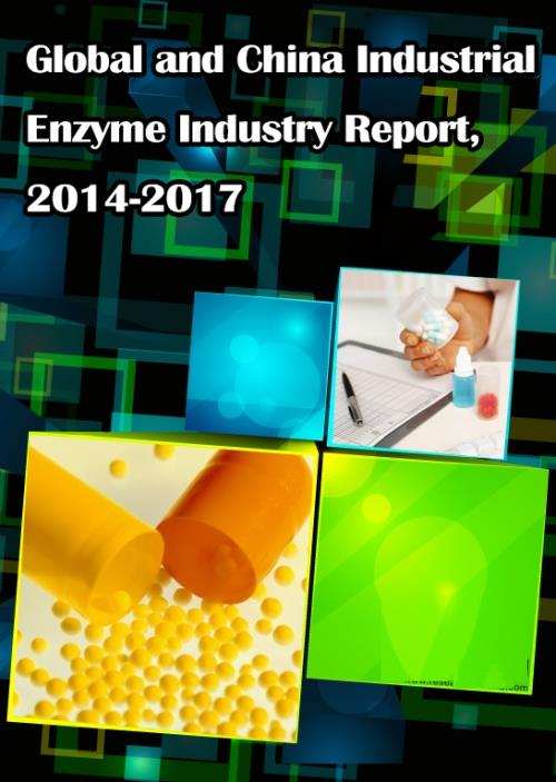 Global and Chinese Industrial Enzyme Industry Report, 2014-2017 - Product Image