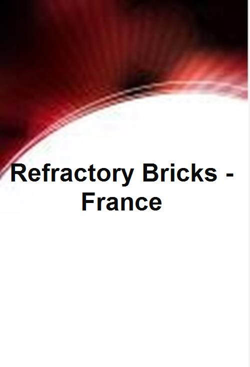 Refractory Bricks - France - Product Image
