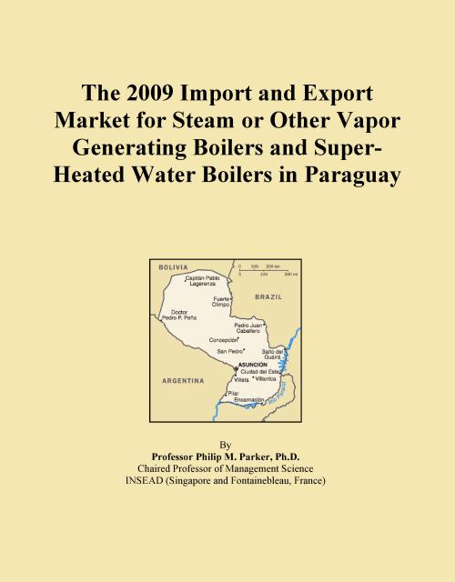 The 2009 Import and Export Market for Steam or Other Vapor Generating Boilers and Super-Heated Water Boilers in Paraguay - Product Image