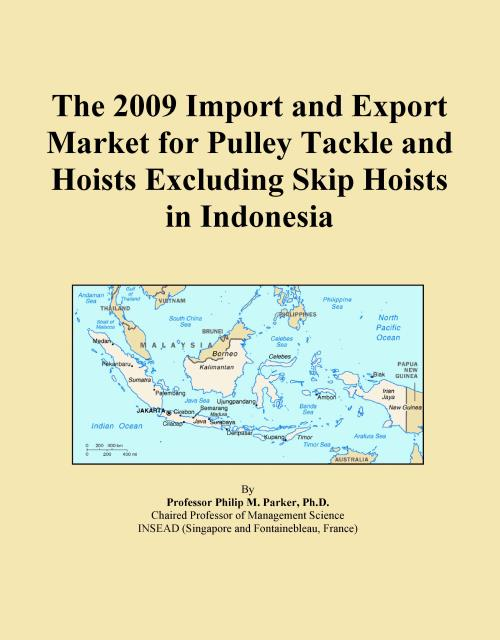 The 2009 Import and Export Market for Pulley Tackle and Hoists Excluding Skip Hoists in Indonesia - Product Image