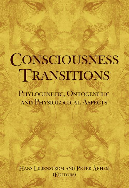 Consciousness Transitions - Product Image