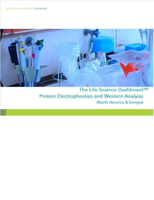 protein characterization by electrophoresis Analytical protein characterization ensures the all key components of thorough characterization of recombinant protein based protein electrophoresis.