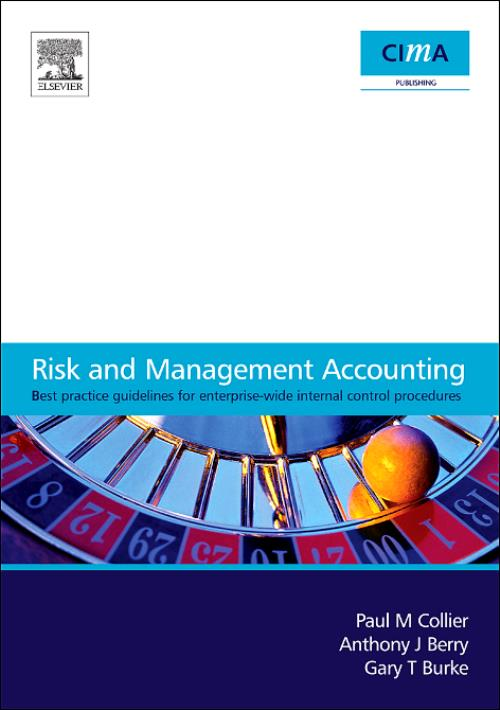 Risk and Management Accounting - Product Image