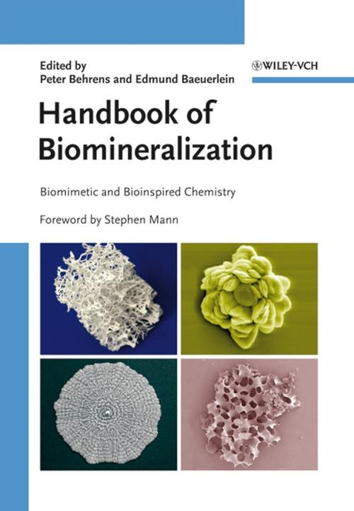 Handbook of Biomineralization. Biomimetic and Bioinspired Chemistry - Product Image