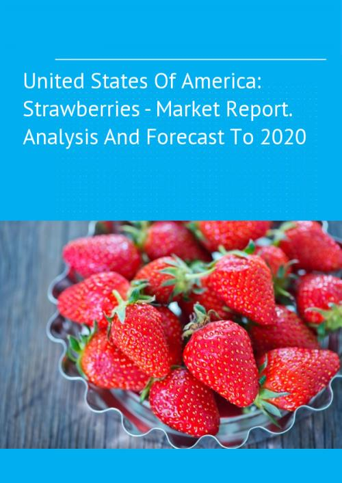 an overview of the market structures in the united states of america United states of america beer and cider market insights  € 10155 august 2017 united states of america beer and cider market insights 2017summaryglobaldata's united states of america beer and cider market insights 2017 report provides a complete overview of the united states of.
