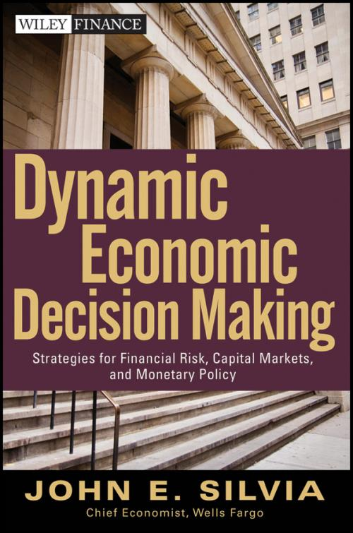 Dynamic Economic Decision Making Strategies For Financial Risk