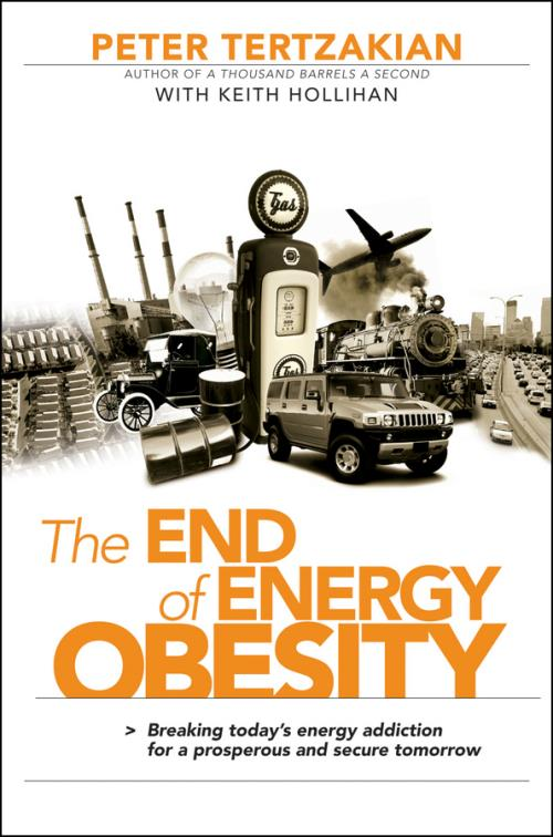 The End of Energy Obesity. Breaking Today's Energy Addiction for a Prosperous and Secure Tomorrow - Product Image