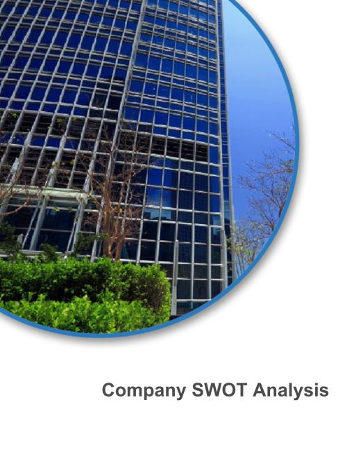 Link Bilgisayar Sistemleri Yazilimi ve Donanimi Sanayi ve Ticaret A.S. (LINK) - Financial and Strategic SWOT Analysis Review - Product Image