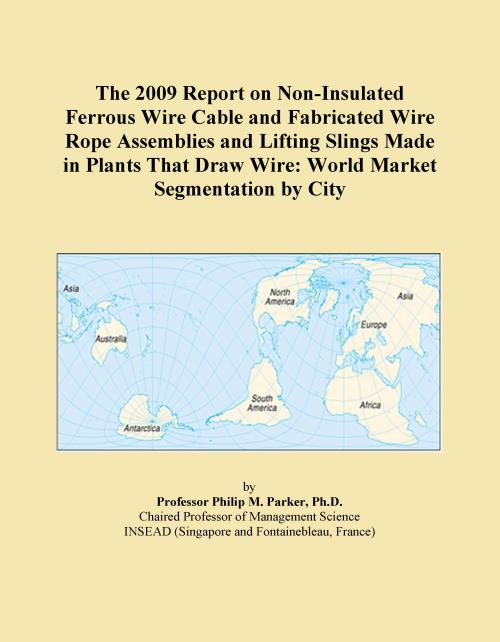 The 2009 Report on Non-Insulated Ferrous Wire Cable and Fabricated Wire Rope Assemblies and Lifting Slings Made in Plants That Draw Wire: World Market Segmentation by City - Product Image