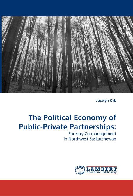 The Political Economy of Public-Private Partnerships:. Edition No. 1 - Product Image