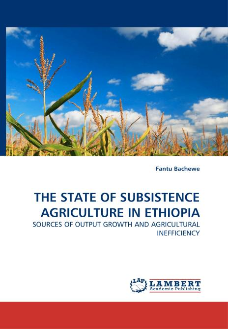 THE STATE OF SUBSISTENCE AGRICULTURE IN ETHIOPIA. Edition No. 1 - Product Image