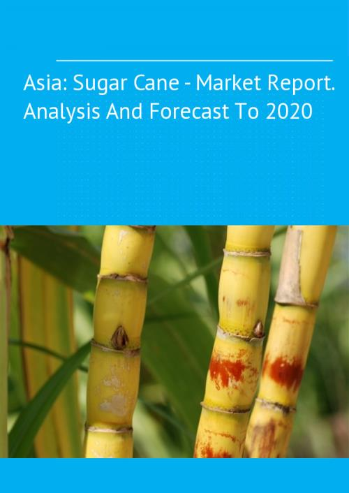 Queensland sugar mill explores growing cane away from coastal fringe