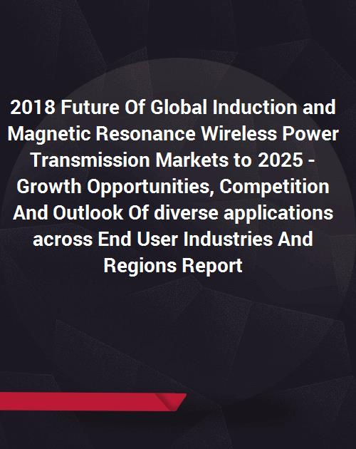 2018 Future Of Global Induction and Magnetic Resonance